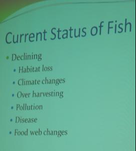 fish_current_status